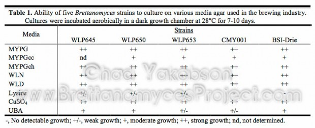 Ability of Brettanomyces yeasts to culture on various media agar